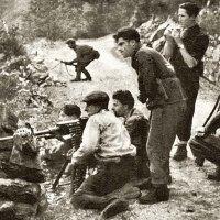 La contro-guerriglia italiana e tedesca durante la Seconda Guerra Mondiale e la Teoria del Partigiano di Carl Schmitt